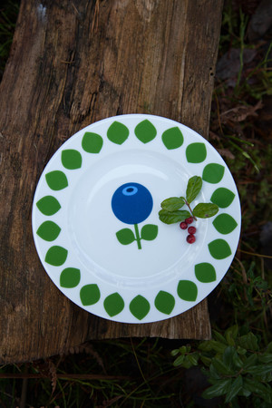 Plate Blueberry, 19 cm